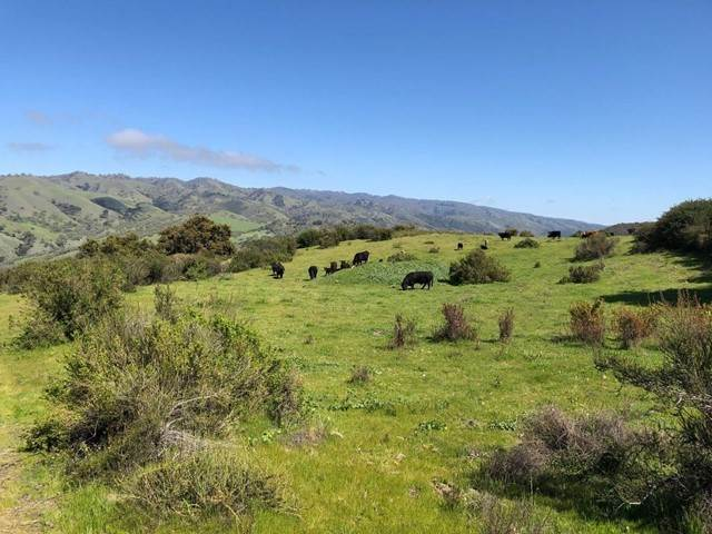 Land for Sale at 36000 Carmel Valley Road Carmel Valley, California 93924 United States