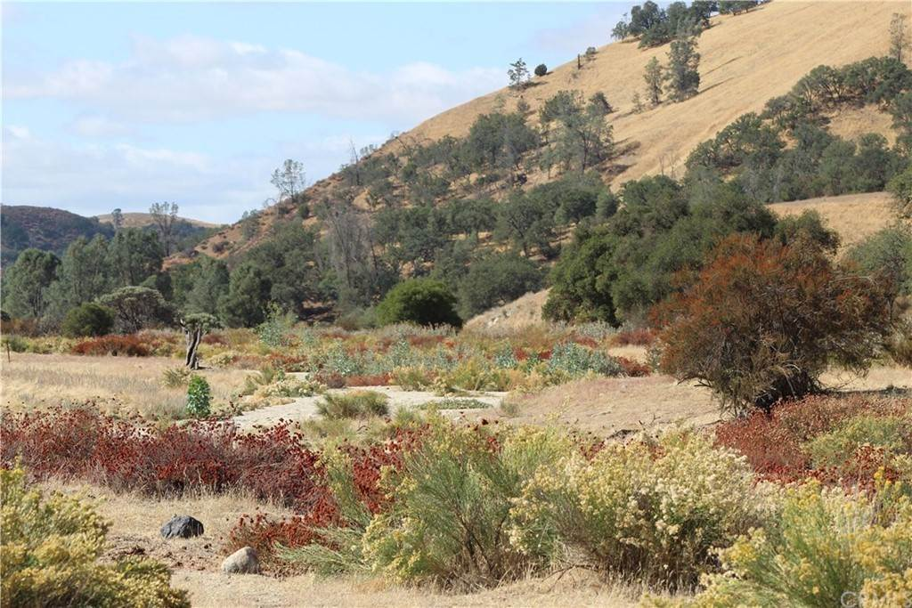 Land for Sale at 71900 Vineyard Canyon Road San Miguel, California 93451 United States