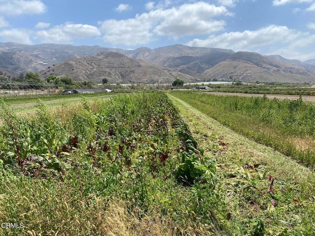 Land for Sale at Howe Road Fillmore, California 93015 United States